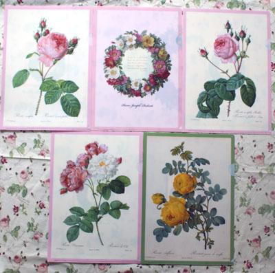 画像1: 特価 A4クリアファイル薔薇5種セット